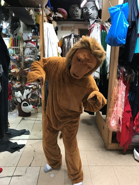 Lion Open Faced Mascot Costume for rent in Los Angeles fun