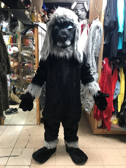 Black Poodle Mascot Costume for rent in los angeles