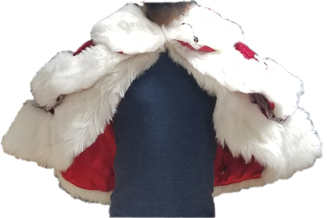 Double Shawl Collar with Silver Trim for santa or mrs claus adeles of hollywood